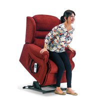 Ashford Standard 1-motor Electric Lift Recliner