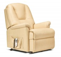 Milburn Small 2-motor Electric Lift Recliner